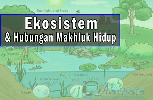 Ekosistem dan Hubungan Mahluk Hidup Materi IPA