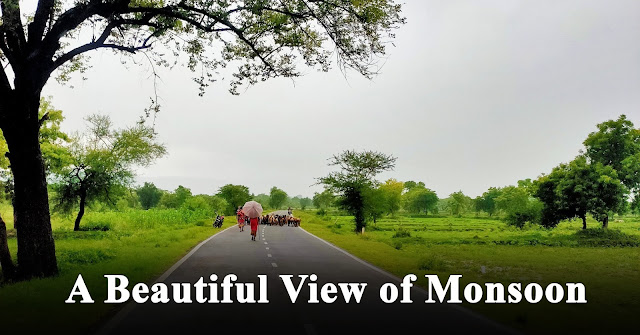 A Beautiful View of Monsoon