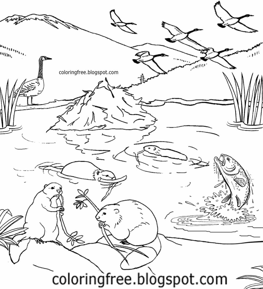 fish wildlife coloring pages | Free Coloring Pages Printable Pictures To Color Kids ...