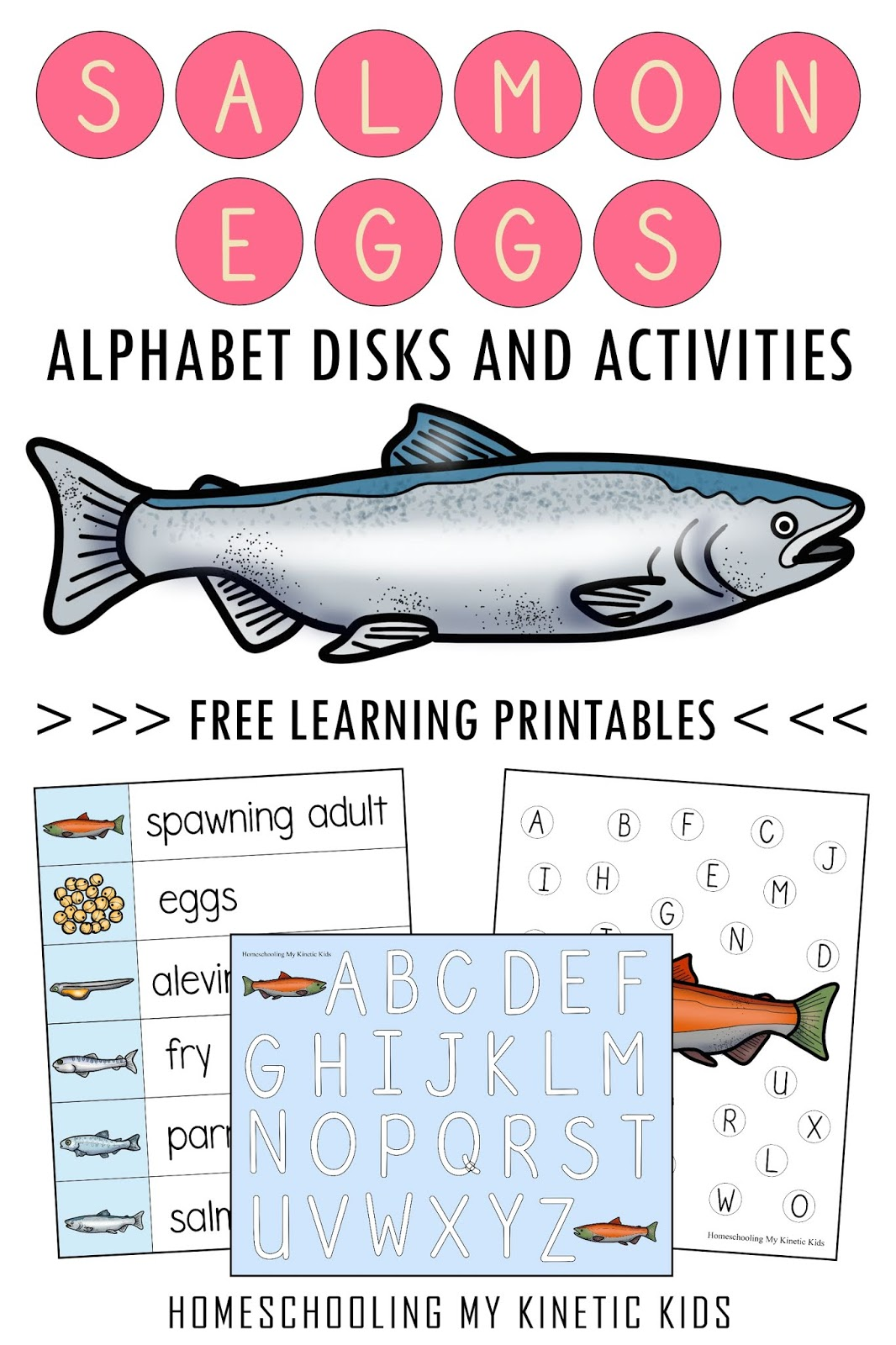 Salmon Movable Alphabet