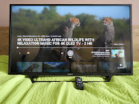 consumer Sony 40-inch LED TV test