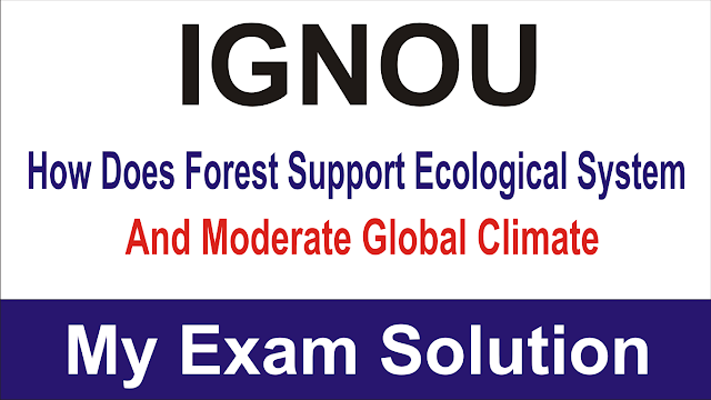 How does forest support ecological system and moderate global climate