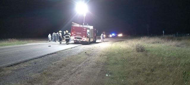 Un automóvil choca con un caballo en RN8 Km 168: muere el jinete y el equino