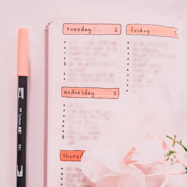 Plan With Me June Bullet Journal Layout