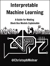Interpretable Machine Learning: Black Box Models Explainable
