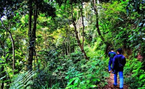 Jalan menuju wisata Curug Benowo ungaran yang asri