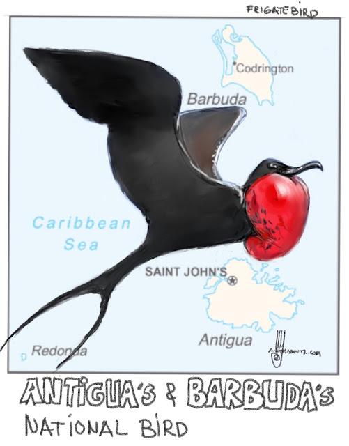 National bird of Antigua and Barbuda Bird painting by Ulf Artmagenta