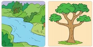 manfaat-manfaat sungai dan pohon bagi manusia www.simplenews.me