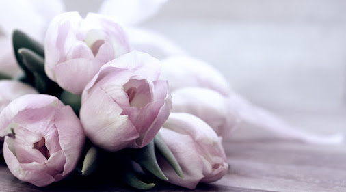 صور زهور ورق حائط 20