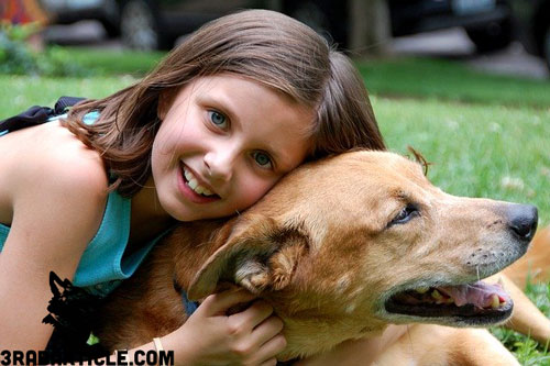How to Keep Your Dog Happy and Healthy