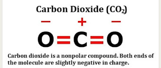 Apakah Karbon Dioksida (CO2) Bersifat Polar Atau Non Polar?