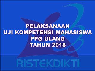 pelaksanaan ukm ppg tahun 2018