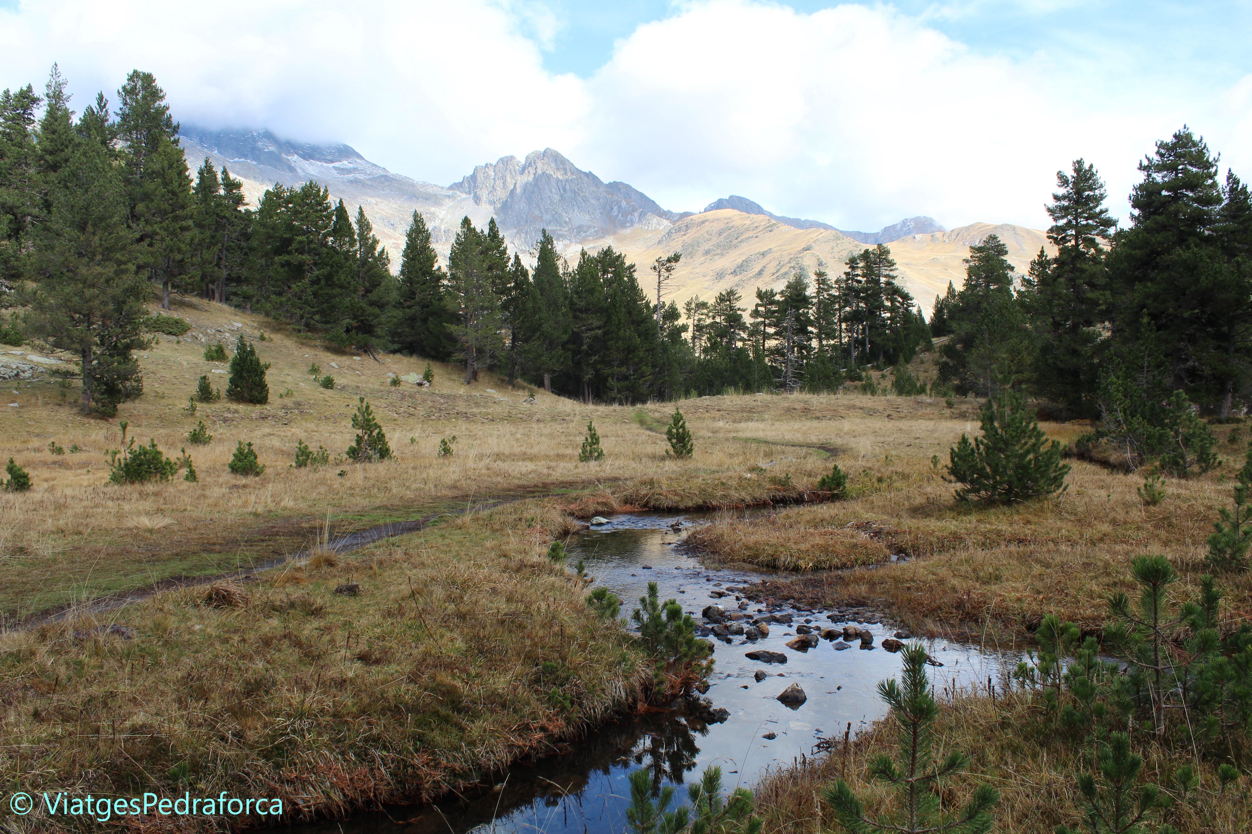 Vall de Benasc, Benasque, Vall d'Estós, Pirineus, natura, senderisme, Aragó, fotografia de natura