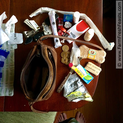 What's in my purse? A child's knife, hand lotion, band aids, a catheter, emergency toilet paper, chocolates, gum, ear plugs, a dog biscuit, a sewing kit. No tissues.