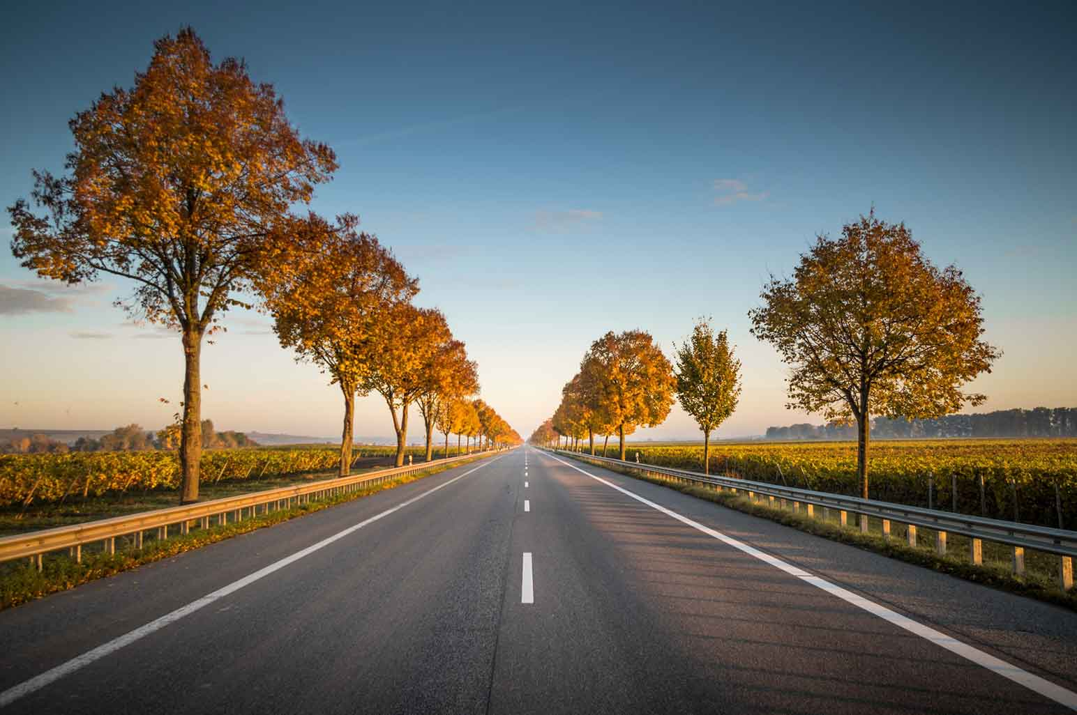 Facts You Need to Know About Right of Way on the Road