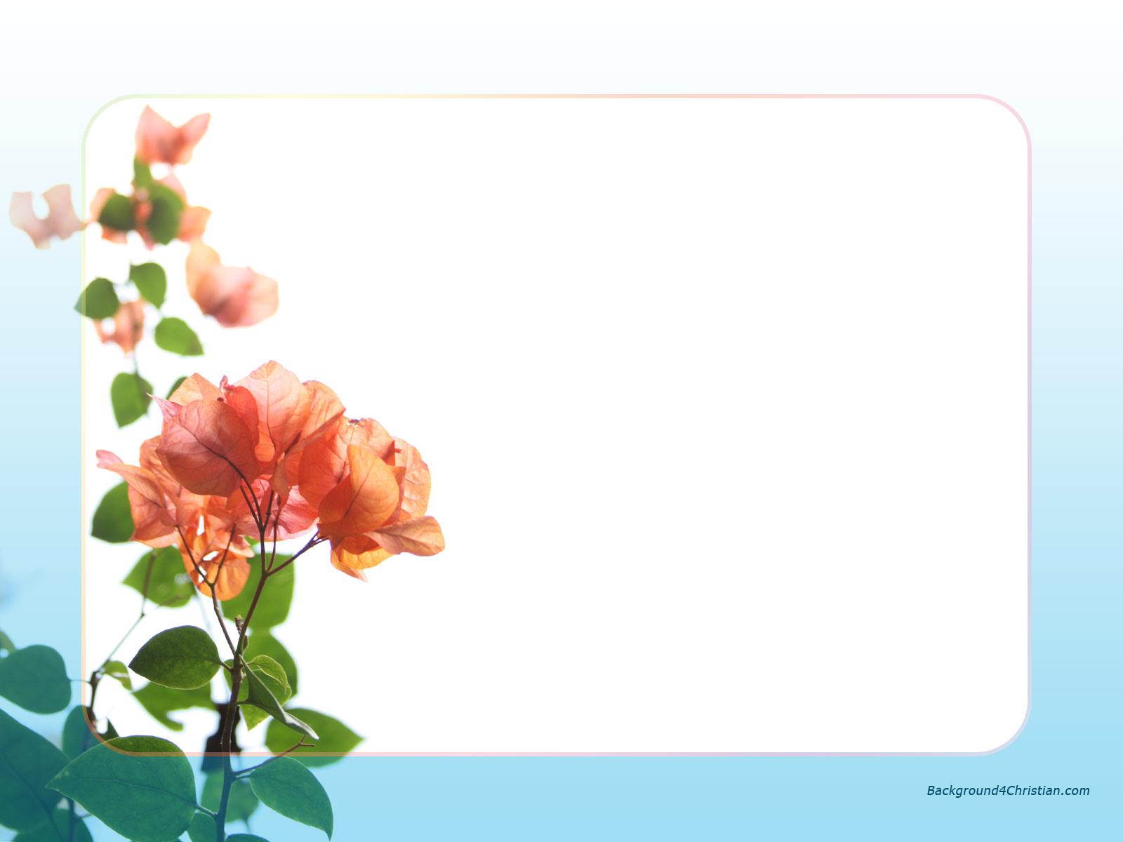 Free Wallpaper Stock: Wallpaper Borders