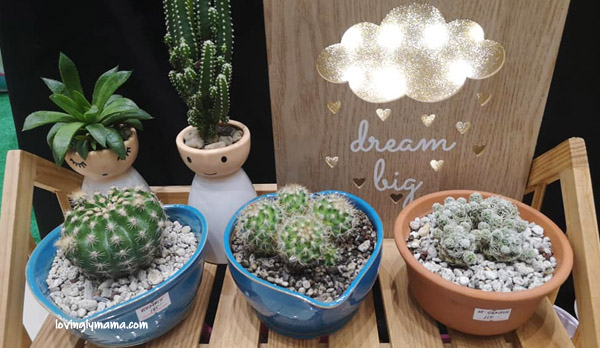 Expo Mom 2019 Negros - Mommy Mundo - motherhood - Pass It On Mom - Mommy Sigrid - succulents