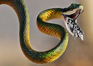 Il serpente e la lucertola (Fedro)