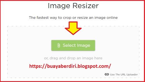 Cara Mengubah Ukuran Foto Menjadi 3x4 4x6 2x3 Online