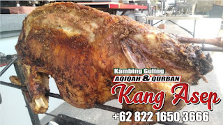 barbeque kambing guling kang asep di lembang
