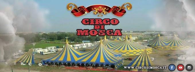 Acrobazie estreme e magica atmosfera con il Circo di Mosca a Castelfranco Emilia