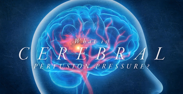 What is Cerebral Perfusion Pressure? | El Paso, TX Chiropractor