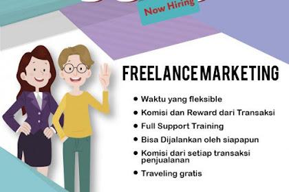 Info Lowongan Kerja Freelance Marketing Olita Tour