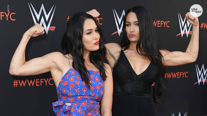 WWE twins Nikki and Brie Bella both give birth one day apart