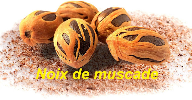 noix de muscade photo