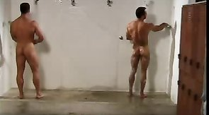 Two muscled naked lovers are posing naked in the shower