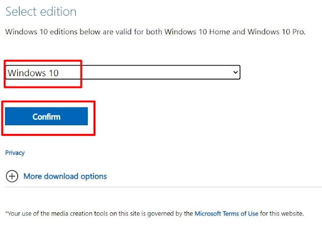 choose windows 10 may 2021 edition