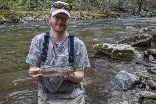 Rainbow Trout from Little River in the Great Smoky Mountains