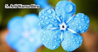 Arti Warna Biru Dalam Pemilihan Souvenir