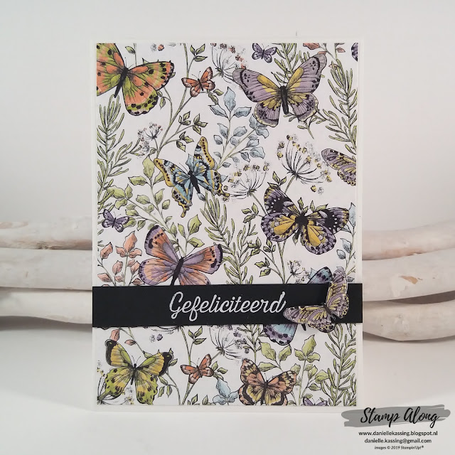 Stampin'Up! Botanical Butterfly dsp SAB