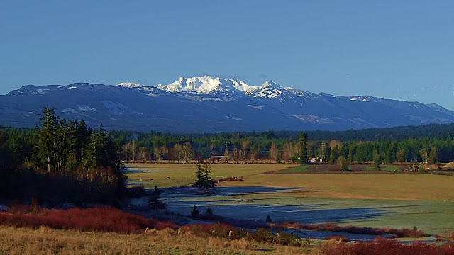 Mt Arrowsmith seen from Nanoose on Vancouver Island.