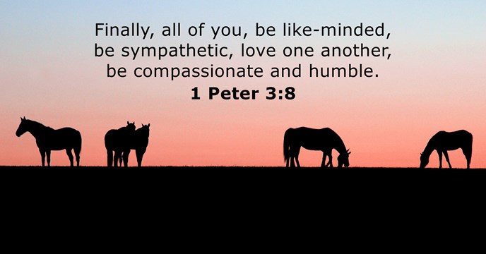 Finally, all of you, be like-minded, be sympathetic, love one another, be compassionate and humble.