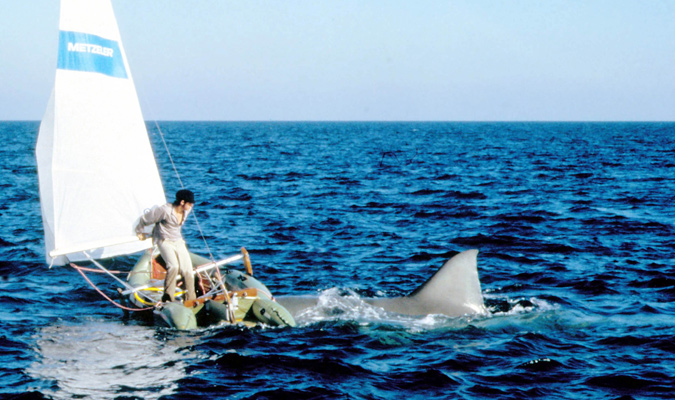 The Ace Black Movie Blog Movie Review Jaws 2 1978