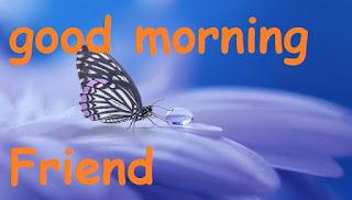 friends good morning