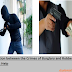 Explain the Distinction between the Crimes of Burglary and Robbery -Assignment Sample