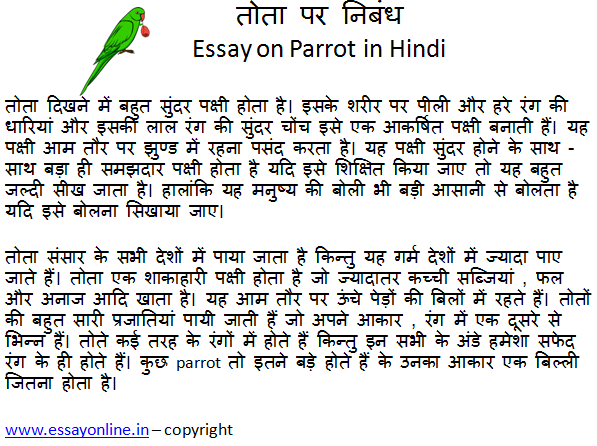 Essay on Parrot in Hindi
