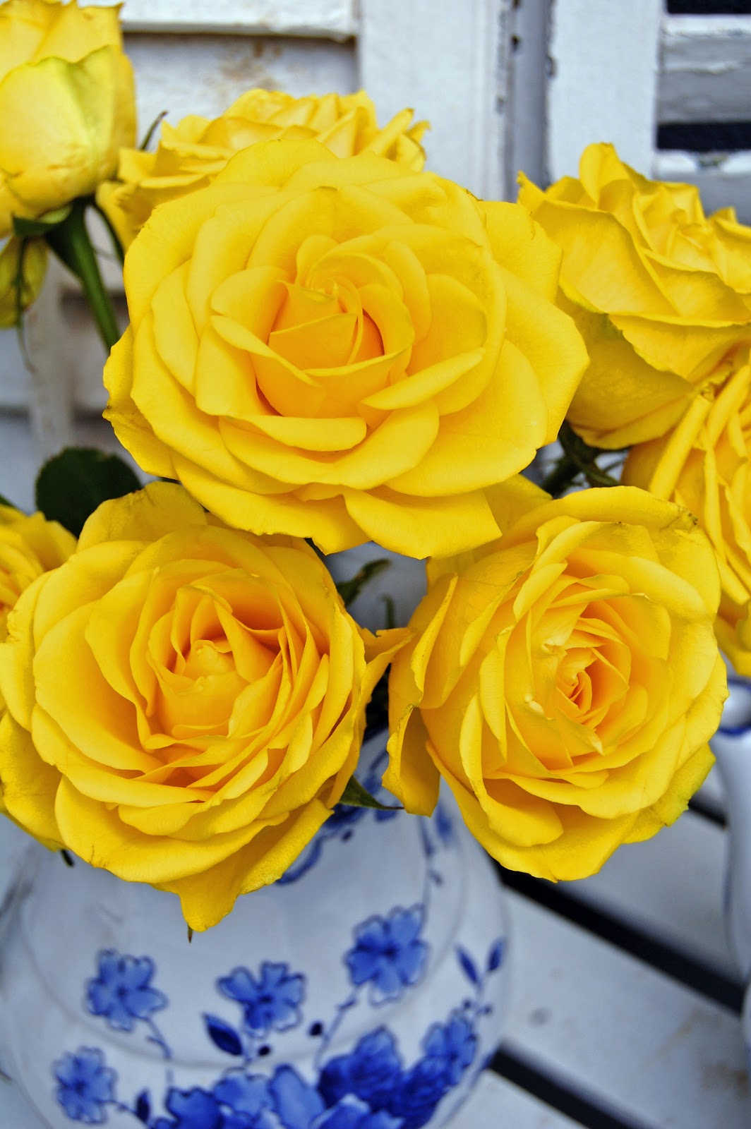 My Painted Garden Painting Yellow Cottage Roses