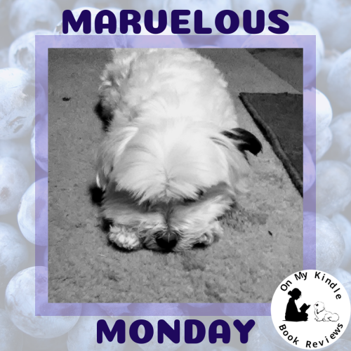 Marvelous Monday with Lexi at On My Kindle BR: July 22nd Edition!