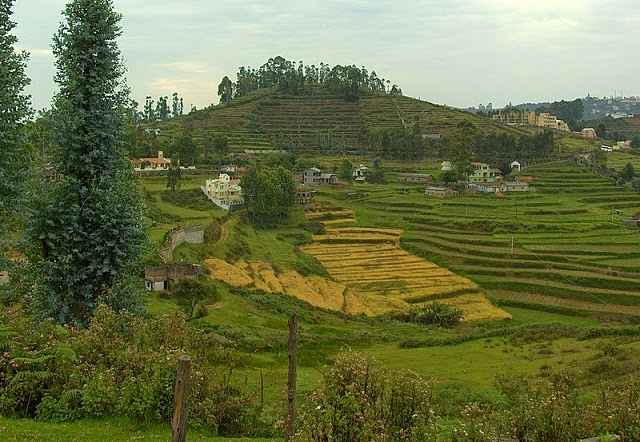 Kodaikanal Tourist Places in Tamil Nadu