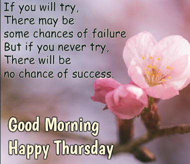 Happy good morning Thursday funny quotes images