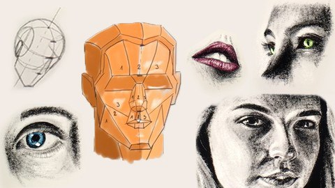 Portrait Drawing 101 Course - Portrait Drawing For Beginners [Free Online Course] - TechCracked