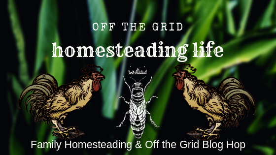 family homesteading and off the grid blog hop