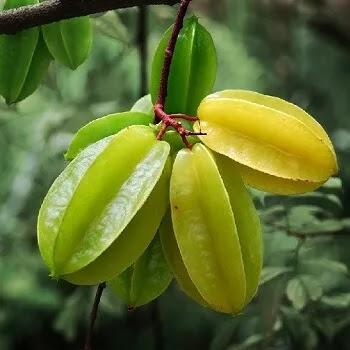 स्टार फळ, Star fruits name in Marathi