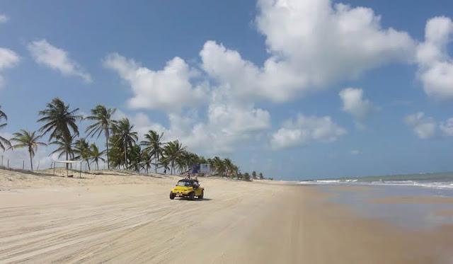 praia calma com coqueiros e um buggy amarelo