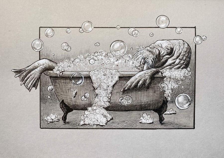 03-The-walrus-bath-Kyla-Barnett-www-designstack-co