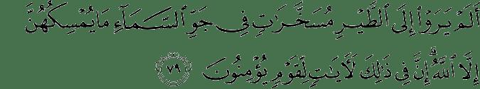 Surat An Nahl Ayat 79